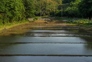 シンメトリーな田園風景の写真素材 [FYI00262025]