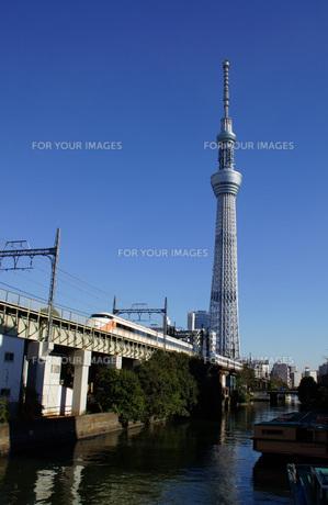 東武スペーシアとスカイツリーの写真素材 [FYI00262062]
