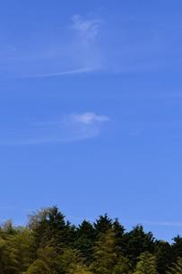 薄い雲がかかる青空の写真素材 [FYI00262212]