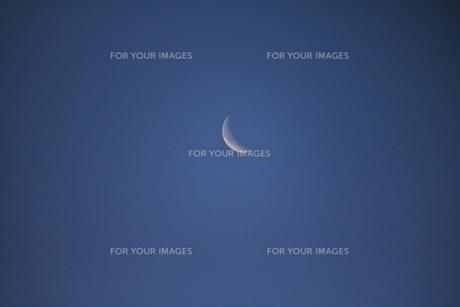 昼間の月の写真素材 [FYI00262501]