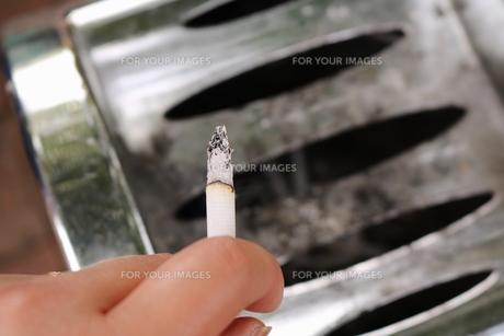 タバコを吸う手の写真素材 [FYI00262554]