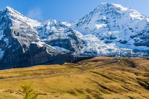 スイスの写真素材 [FYI00262619]