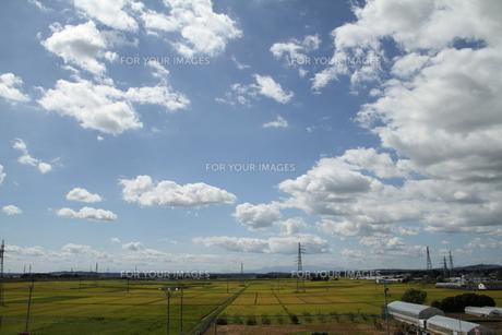 田園と空の素材 [FYI00262999]