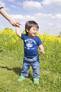 菜の花畑で手をつなぐ笑顔の子供の写真素材 [FYI00263097]