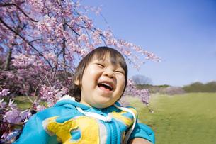 桜と大笑いする子供の写真素材 [FYI00263157]