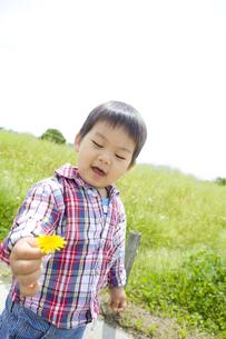 タンポポを摘む笑顔の子供の写真素材 [FYI00263263]