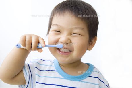 ニコニコ歯磨きする子供の写真素材 [FYI00263274]