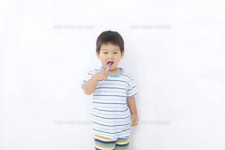 歯磨きする子供の写真素材 [FYI00263285]