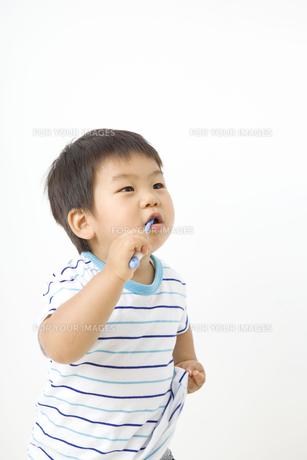 歯磨きする子供の写真素材 [FYI00263297]