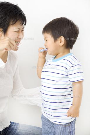 親子で楽しい歯磨きの写真素材 [FYI00263299]