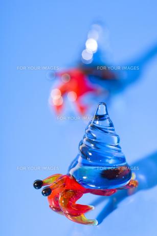 ガラス細工のヤドカリの写真素材 [FYI00263320]