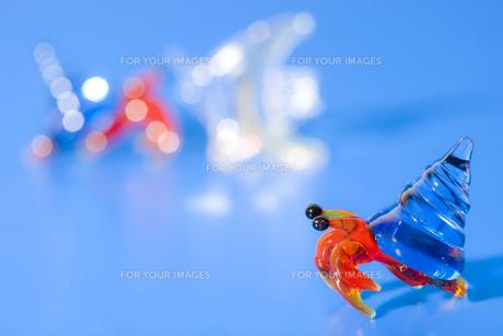 ガラス細工のヤドカリの写真素材 [FYI00263345]