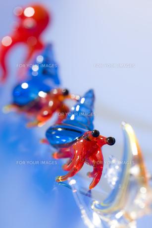 ガラス細工の生き物達の写真素材 [FYI00263351]