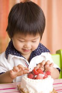 ケーキを食べようとする子供の写真素材 [FYI00263414]