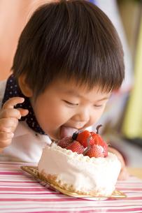 ケーキを舐める子供の写真素材 [FYI00263422]