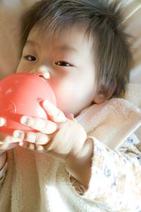 ボールをくわえる赤ちゃんの写真素材 [FYI00263489]