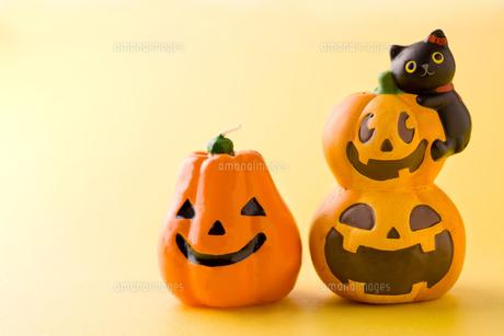 ハロウィンのかぼちゃ達の写真素材 [FYI00263509]