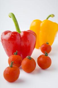 パプリカとトマトの写真素材 [FYI00263557]