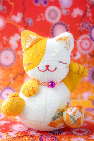 笑顔の招き猫の写真素材 [FYI00263558]