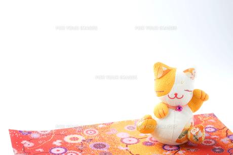 招き猫の写真素材 [FYI00263564]