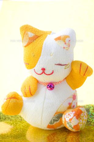 輝く招き猫の写真素材 [FYI00263568]