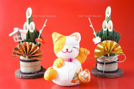 門松と招き猫の写真素材 [FYI00263607]