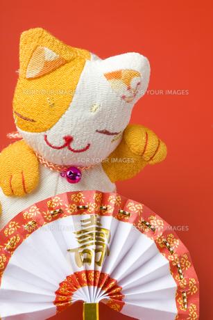 正月と招き猫の写真素材 [FYI00263645]
