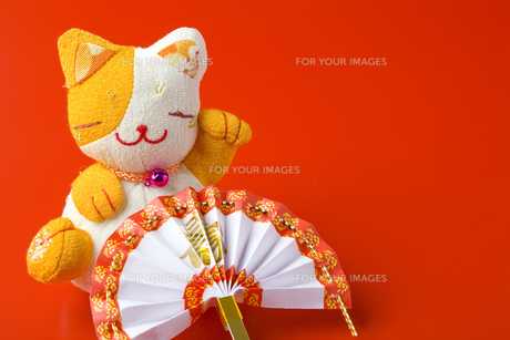 扇子と招き猫の写真素材 [FYI00263653]