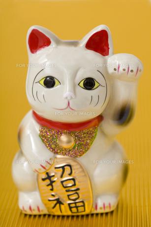 招き猫の写真素材 [FYI00263721]