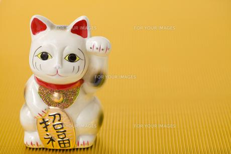 招き猫の写真素材 [FYI00263733]