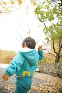 紅葉と後姿の子供の写真素材 [FYI00263768]