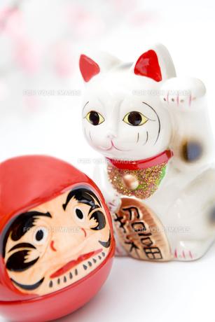 ダルマと招き猫の写真素材 [FYI00263769]