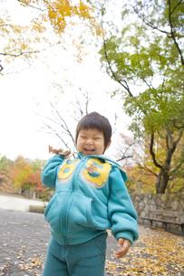 落ち葉を持った元気な子の写真素材 [FYI00263773]