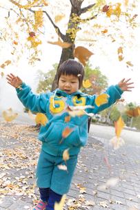 舞い散る落ち葉と子供の写真素材 [FYI00263774]