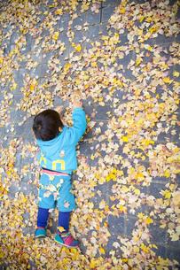 落ち葉の上に寝そべる子供の写真素材 [FYI00263776]