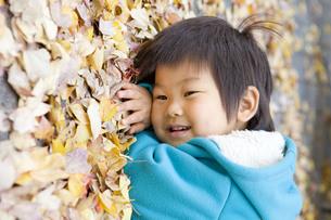 落ち葉の上に横になる子供の写真素材 [FYI00263786]