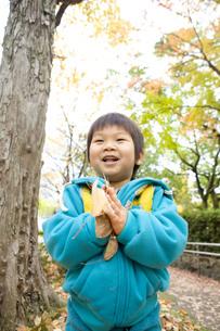 落ち葉を持った子供の写真素材 [FYI00263790]