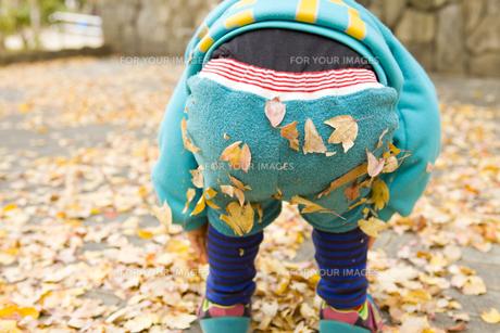 落ち葉の付いた子供のお尻の写真素材 [FYI00263793]