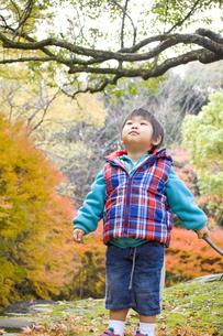 秋の行楽と子供の写真素材 [FYI00263797]