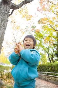落ち葉を持った子供の写真素材 [FYI00263800]