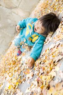 落ち葉に寝転んではしゃぐ子供の写真素材 [FYI00263804]