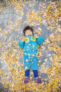 落ち葉の上に寝転ぶ子供の写真素材 [FYI00263805]