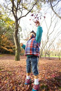 落ち葉を散らす子供の写真素材 [FYI00263809]