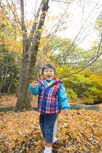 小枝を持って遊ぶ子供の写真素材 [FYI00263810]