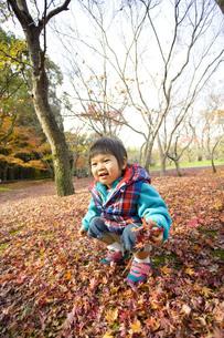 モミジの落ち葉と子供の写真素材 [FYI00263816]