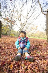 落ち葉の上に座る子供の写真素材 [FYI00263817]