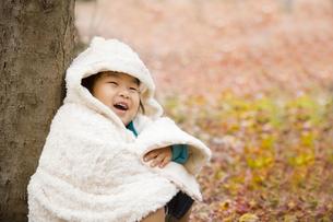 落ち葉と子供の写真素材 [FYI00263832]