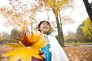 大きな葉を持つ子供の写真素材 [FYI00263841]