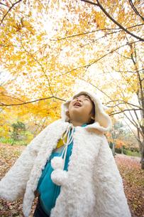 紅葉を見上げる子供の写真素材 [FYI00263849]