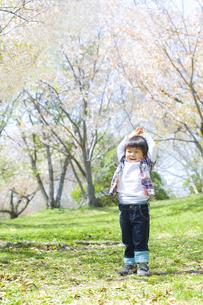 春の行楽と子供の写真素材 [FYI00264291]
